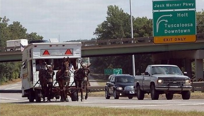Funny RV: Real Horse Power