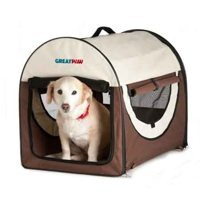 RV-pet-tips-collapsable-carrier.jpg