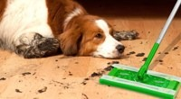 RV-pet-tips-swiffer-fur-cleaner.jpg