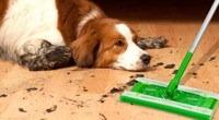 RV-pet-tips-swiffer-fur-cleaner.jpg