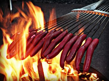 Prepare Campfire Hotdogs And Meals For A Large Group With