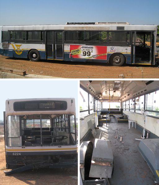 custom-bus-before-2