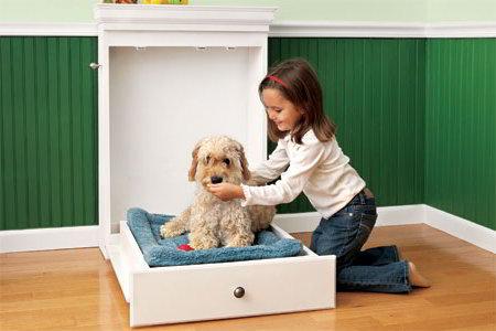 Dog Murphy Bed Diy