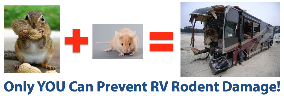Prevent RV Rodent Damage