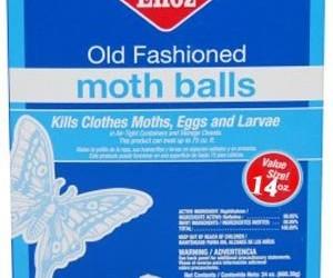 RV rodent control moth balls