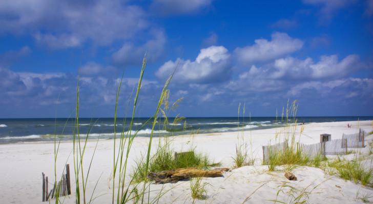 gulf state park gulf shores alabama