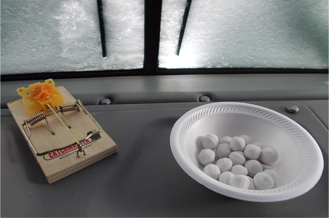 mothballs and mouse trap on RV dashboard