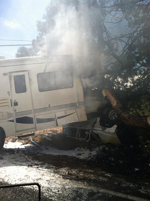 Motorhome crashes into tree