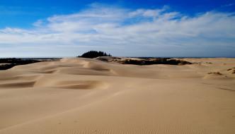 Oregon San Dunes National Recreation Area