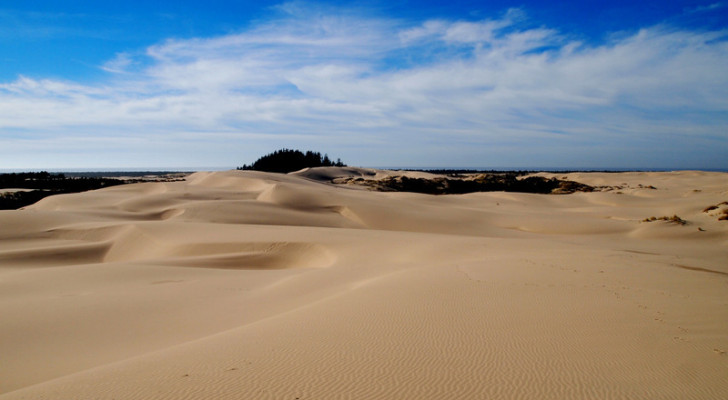 Oregon San Dunes National Recreation Area