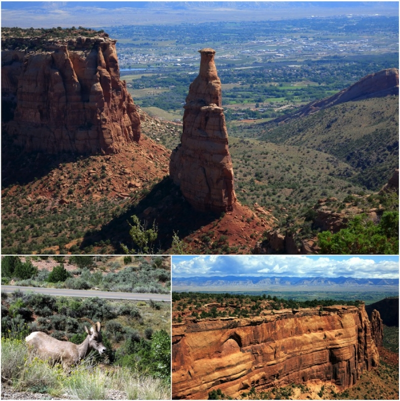 Sightseeing at Colorado National Monument