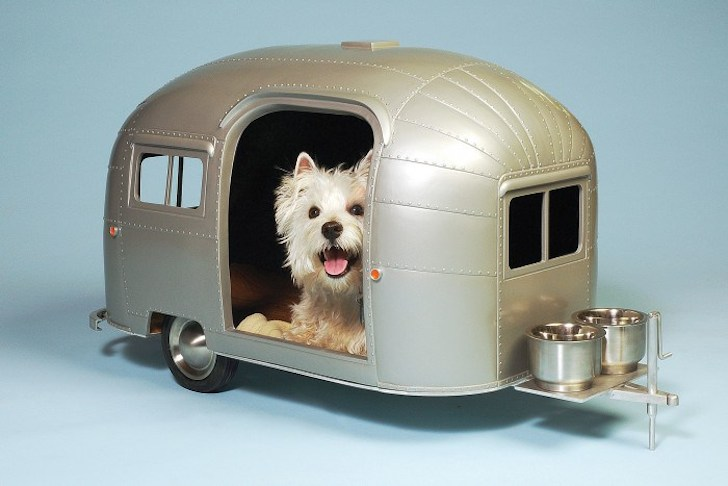 Airstream pet camper
