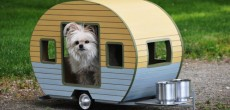 Check Out These Super Realistic Pet Trailers. You'll Giggle At The Custom License Plates.