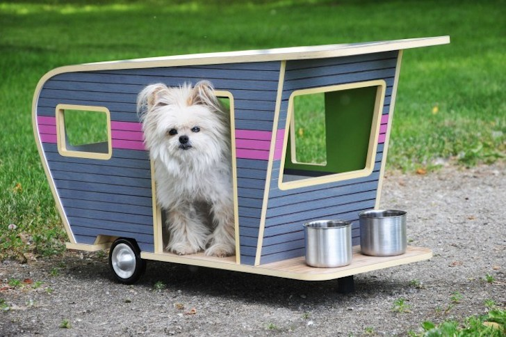 Dog LVR pet camper