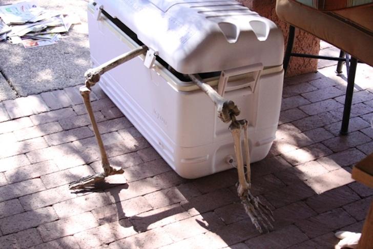 Is this skeleton stuck?
