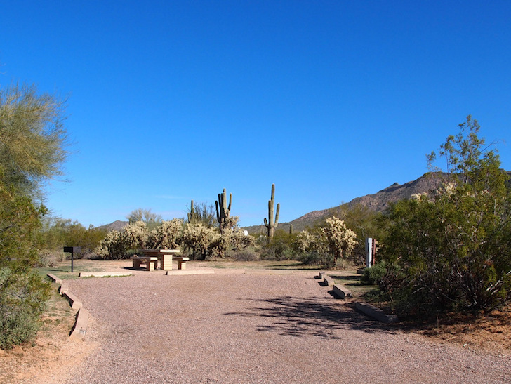 Large RV site at Usery Mountain Regional Park