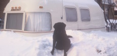 Vintage Photos Of Family's Argosy Trailer Buried In The Chicago Snowstorm Of 1975