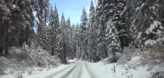 Driving into Yosemite in a snowstorm