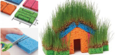 Grass covered sponge house