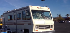Dog in motorhome