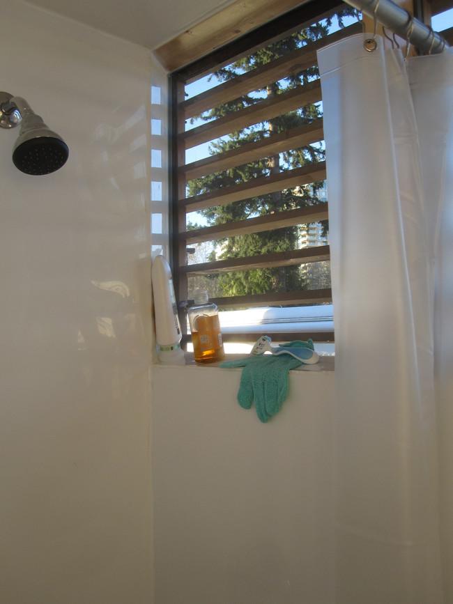 Tiny home shower
