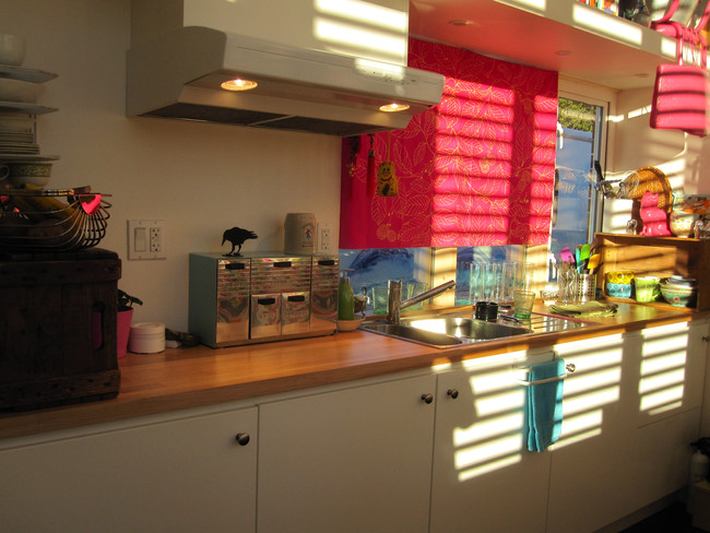 Tiny house kitchen countertop