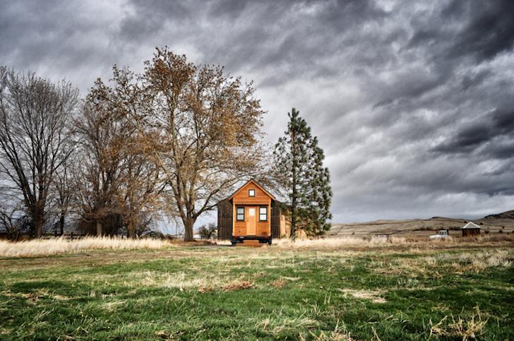 Tiny house landscape