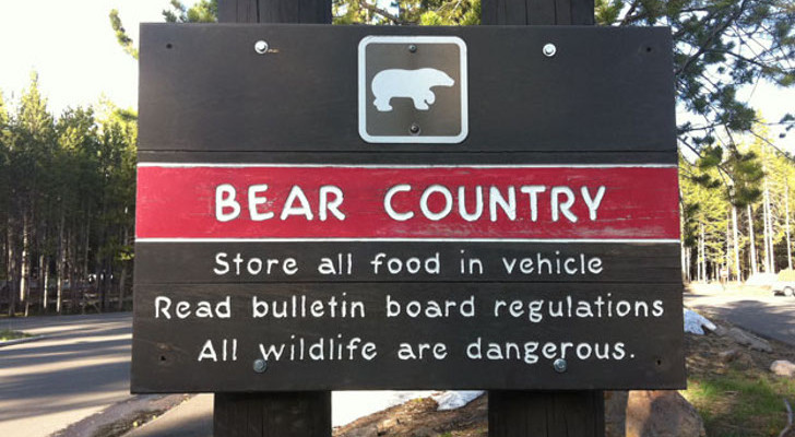 Essential Rules For RVing in Bear Country