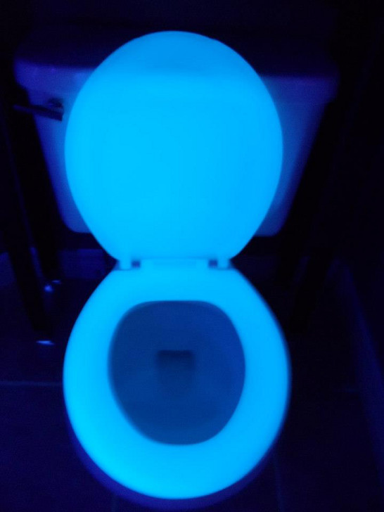 Glow In The Dark RV Toilet Seat Makes Bathroom Trips Safer