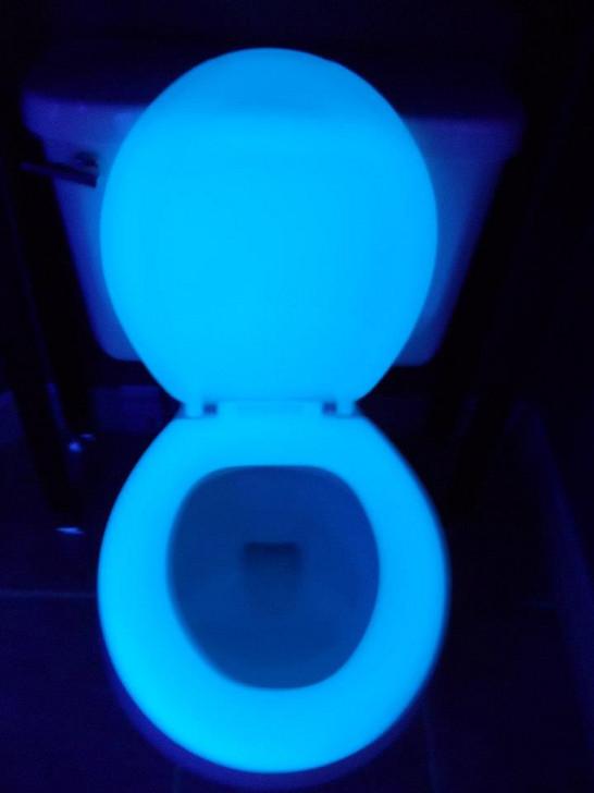 RV toilet seat