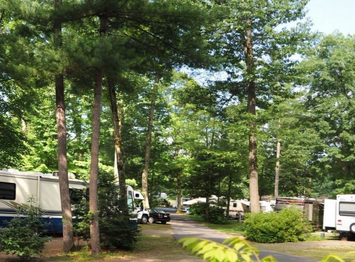 walking trails through the Lake George RV park are dog friendly.