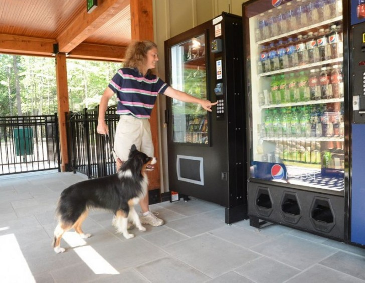 Pet Vending machines at RV Park dog area