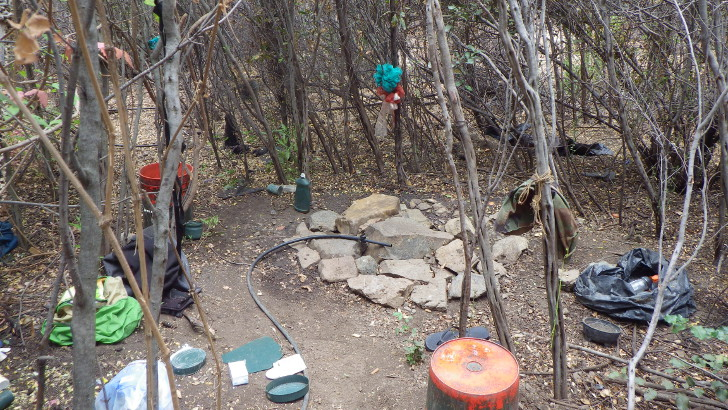 camping near illegal marijuana grow