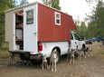 DIY musher dog RV