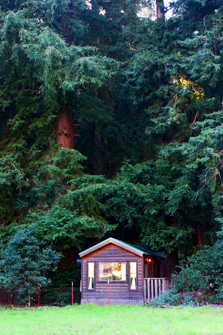 cabin at fernwood