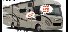 pet-friendly motorhome