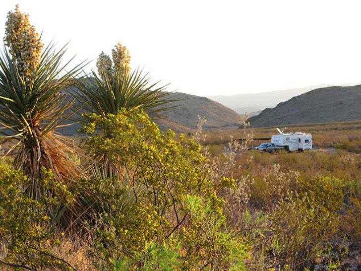Free Camping In Texas: Camping At Wildlife Management Areas