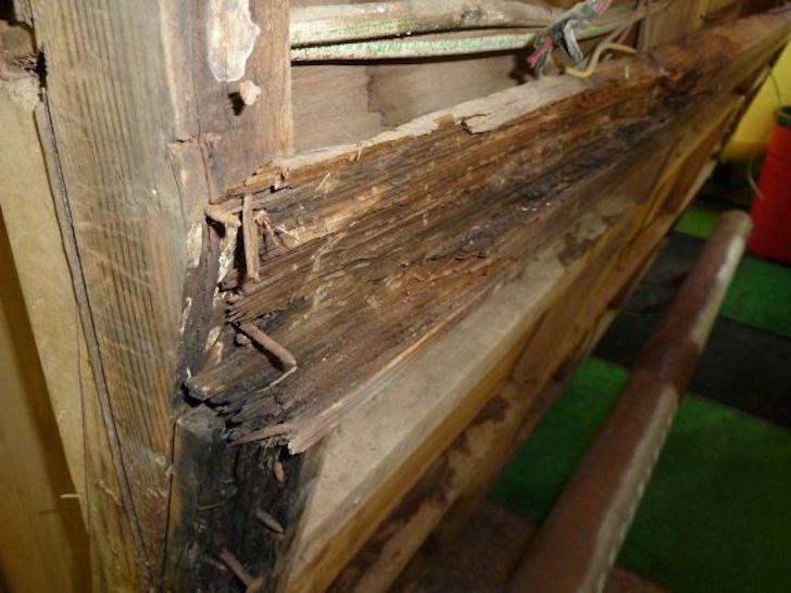 Holiday Rambler wood rot