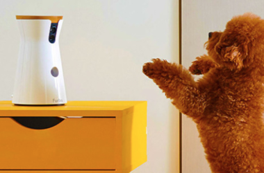 Furbo Can Help You Keep An Eye On Your Pets While You're Away