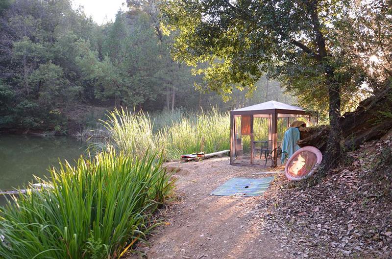 Hipcamp-campsite