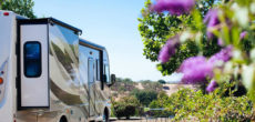 9 West Coast RV Parks For Wine Lovers