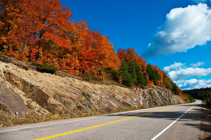 12 Best Road Trips To See Fall Foliage 2018 Best Fall