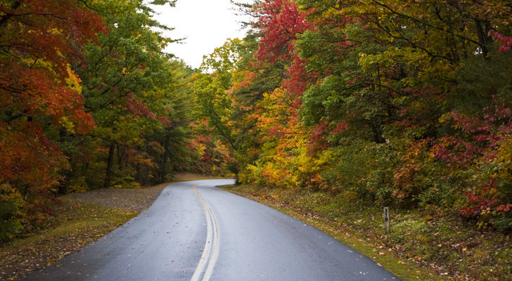 12 Fall Drives Where You Can See Colorful Foliage This Season