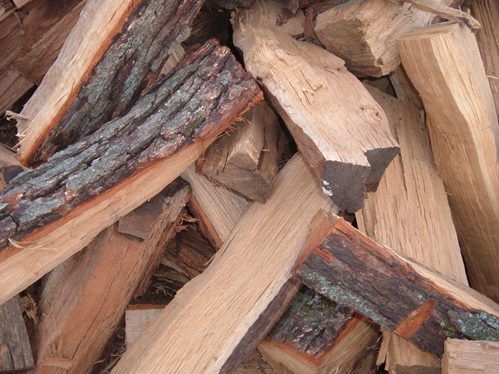 Oak Wood Logs ~ Of the best types firewood to burn in campfires