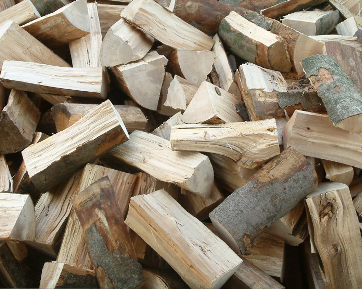 Of the best types firewood to burn in campfires