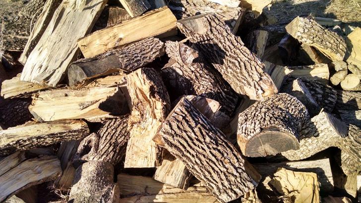 best firewood