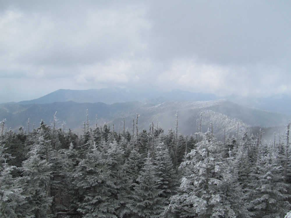 Winter in the Great Smoky Mountains. Photo by Doug Kerr/Flickr