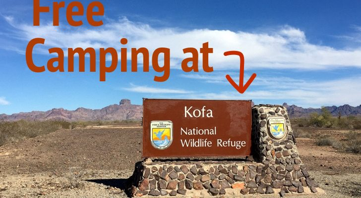 Save Money By Camping At KOFA National Wildlife Refuge For Free