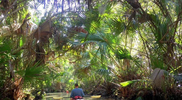 Central Florida Kayaking: 5 Campgrounds with World Class Paddling