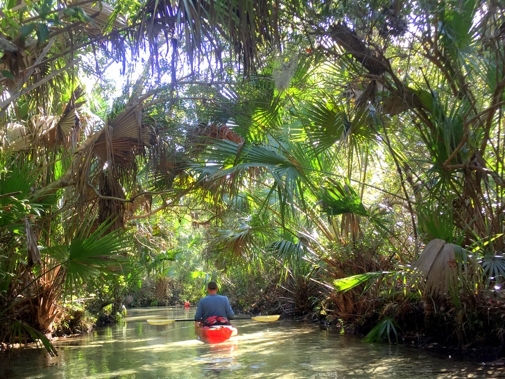 The Best Places To Go Kayaking In Central Florida